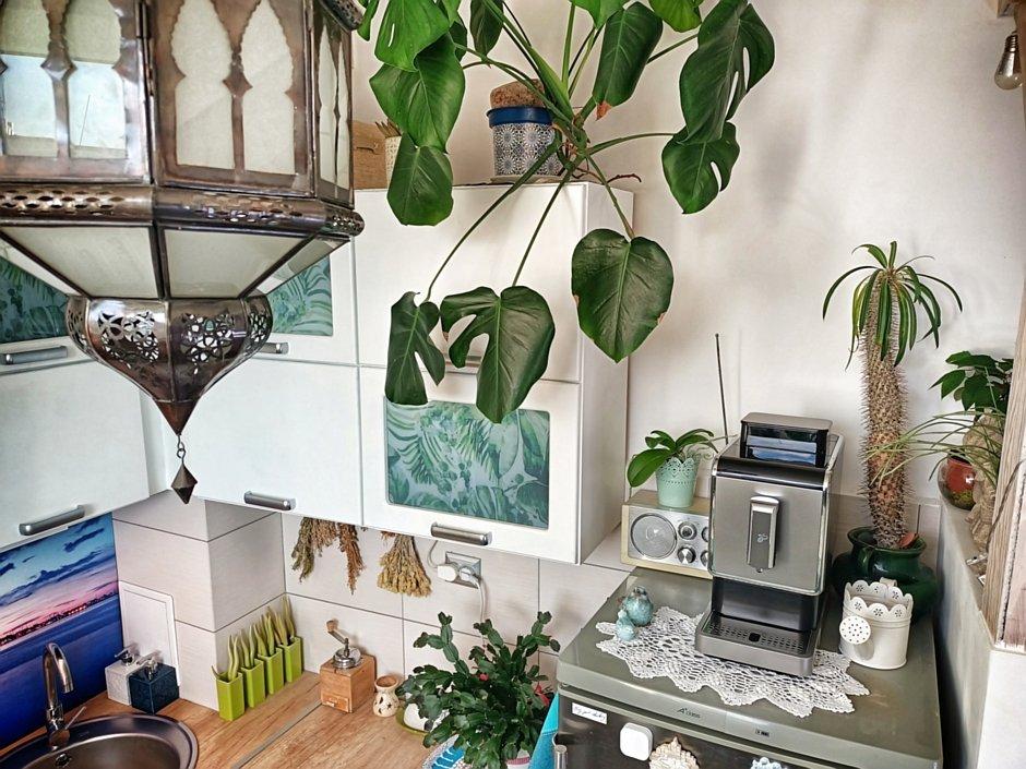 Motyw botaniczny na frontach szafek kuchennych
