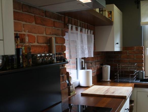 Stara cegła naturalna Elkamino w kuchni