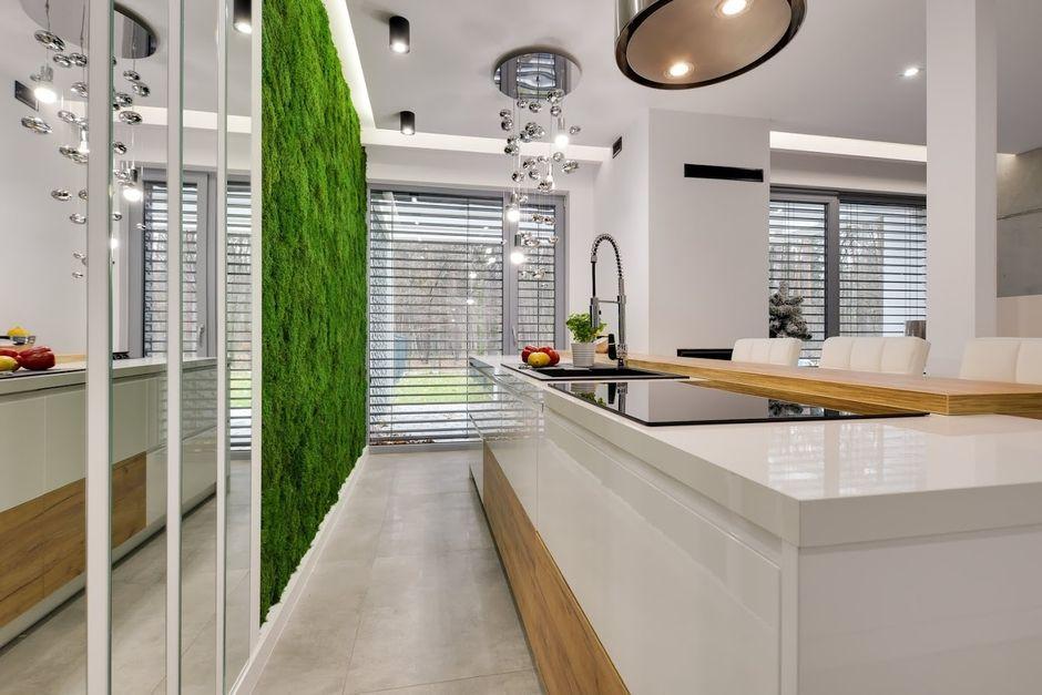 Zielony Mech Na ścianie W Kuchni Z Dużą Wyspą Kuchnia Z