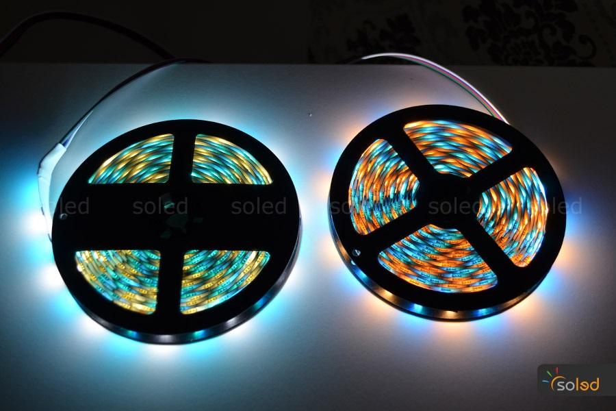Taśma LED RGBW SMD5050 - SOLED